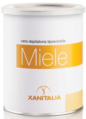 XanitaliaPro Wachsdose Honig 800 ml